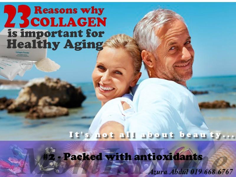 Kolagen sebagai antioksida
