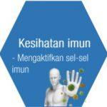 Zinc untuk kesihatan imun