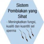 Zinc untuk sistem pembiakan