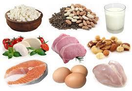 Pengecutan otot - sumber protein