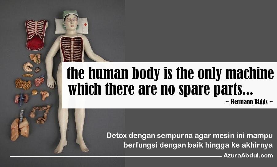 Detox sempurna untuk fungsi tubuh optima