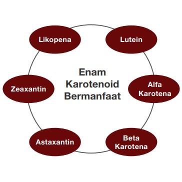 CarotoMax Perlindungan Antioksida