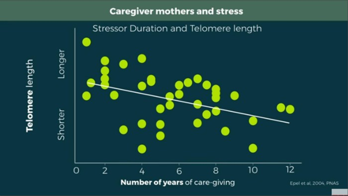 telomere dan penuaan sihat