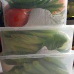 cara simpan sayur lebih lama