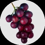 Kebaikan Anggur Muscadine sebagai ramuan di dalam ResV Shaklee