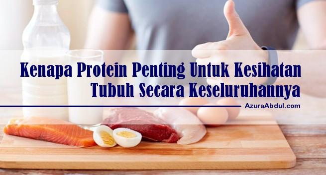 Protein penting untuk kesihatan tubuh secara keseluruhannya