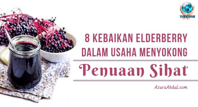 8 kebaikan elderberry dalam usaha menyokong penuaan sihat