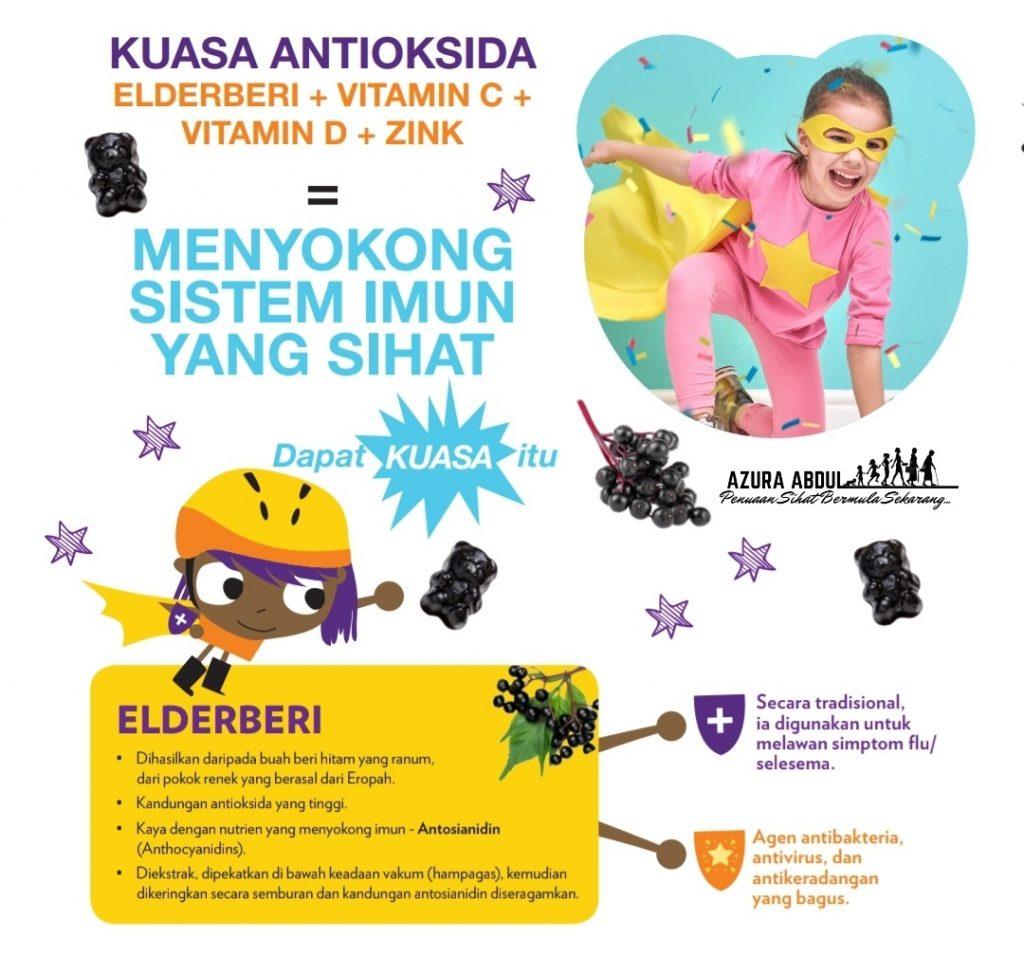 Elderberi Kandungan utama dalam healthy gummy bear hero kiddo shaklee